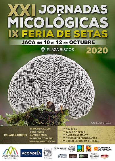 Jornadas Micológicas Jaca