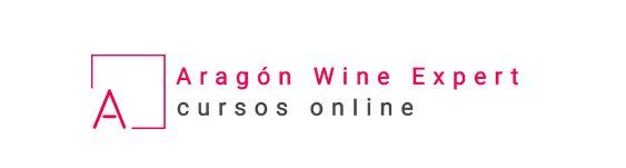 Aragón wine expert