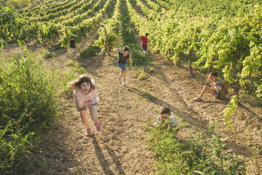 Fotografía archivo Ruta del Vino Somontano, autor Jorge Fuembuena