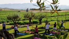 Bodega Laus y yoga