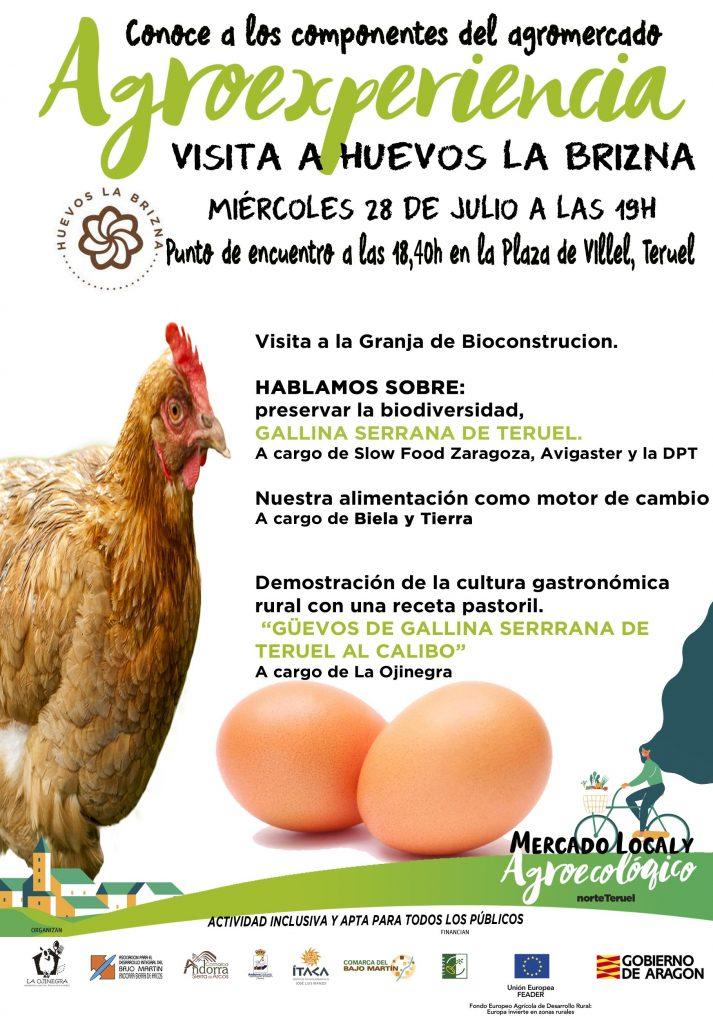 Cartel agroexperiencia Huevos la Brizna