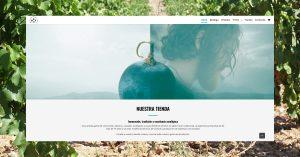 Foto web san Valero 2